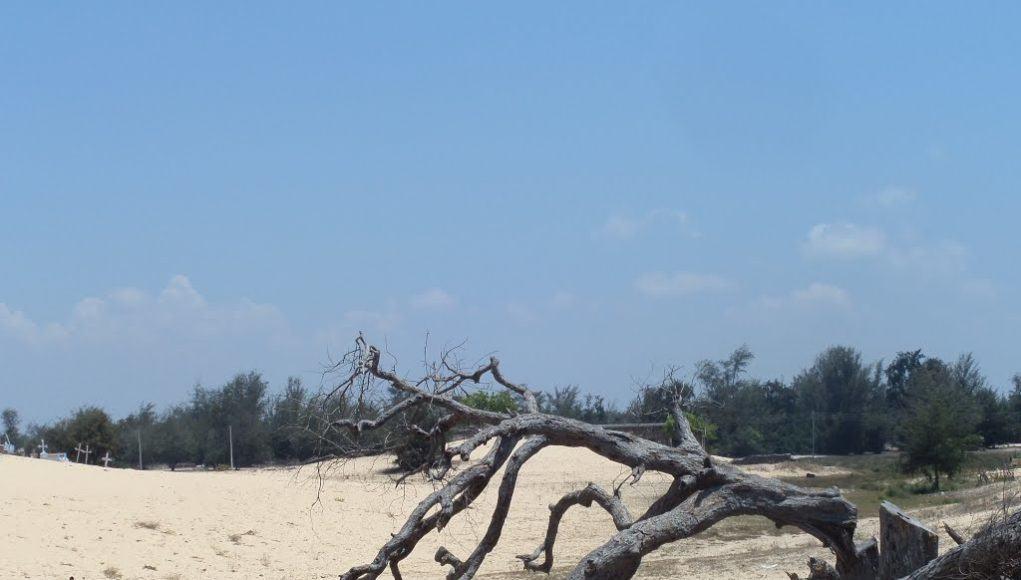 Manalkadu Beach