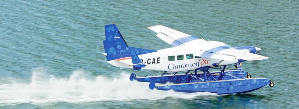 Cinnamon Air Flights