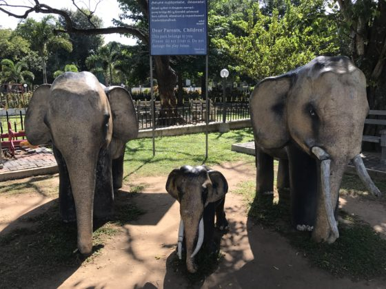 Old Park Jaffna
